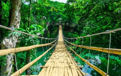 25 Best Things To Do In Bohol, Philippines